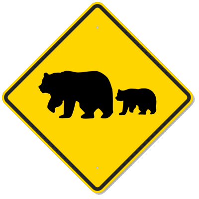 Bear crossing - fonte web