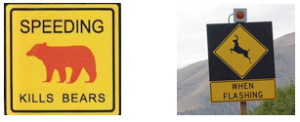 Cartelli stradali - fonte web