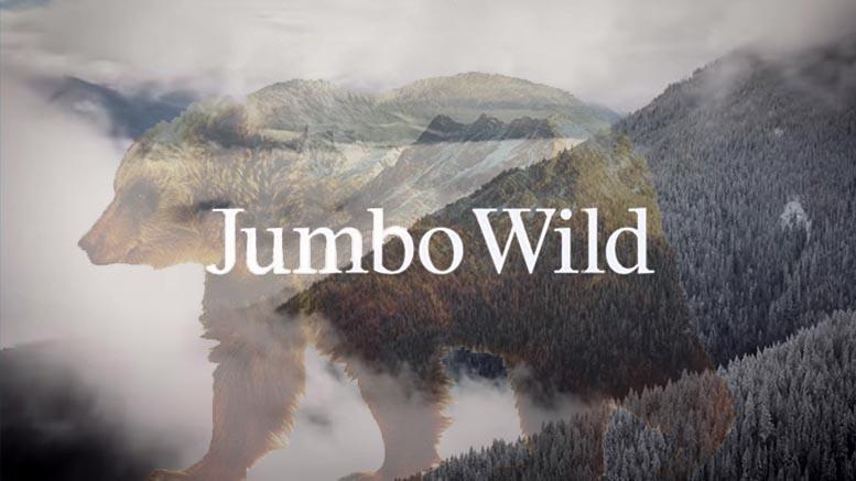 JumboWild