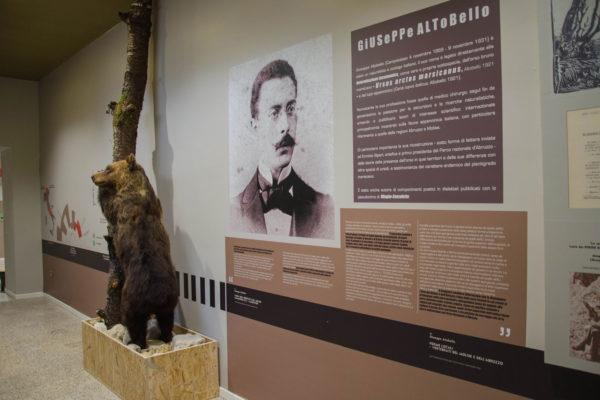 Museo dell'Orso