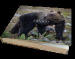 Libro – Ernico. Storia di un orso dell'Appennino