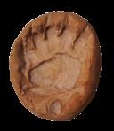 Magnete orma di orso in terracotta